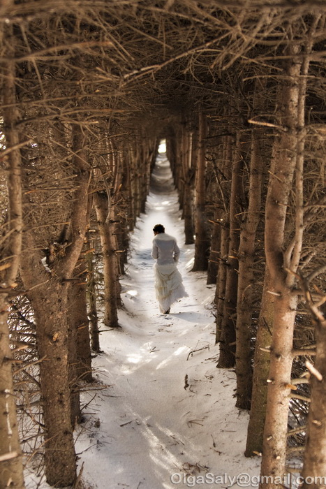 Siberian wedding photography