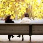 Autumn Park, Lenin Square in Novosibirsk. Impressionist Photography