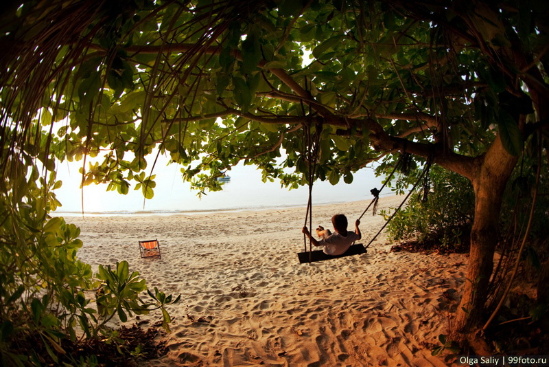 Boy swinging on a swing on the banks of the Gulf of Thailand, Koh Samui, Thailand