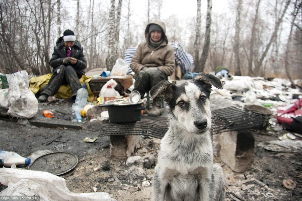 life in dump in Russia (15)