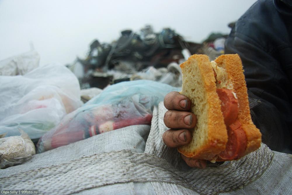 Dump in Russia (11)