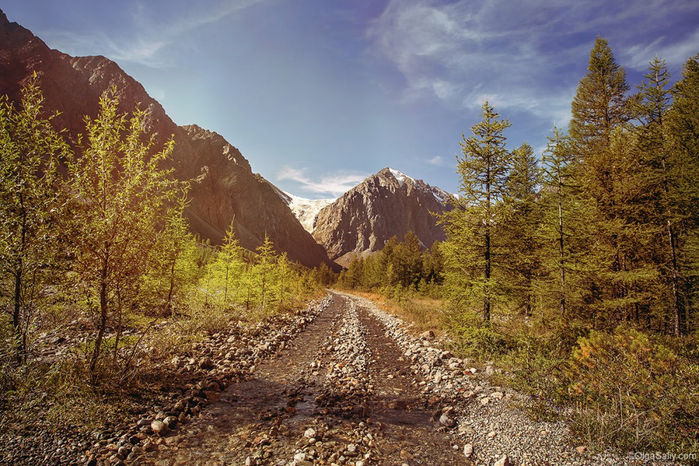 Auto travel in Altai Mountains way to Aktru