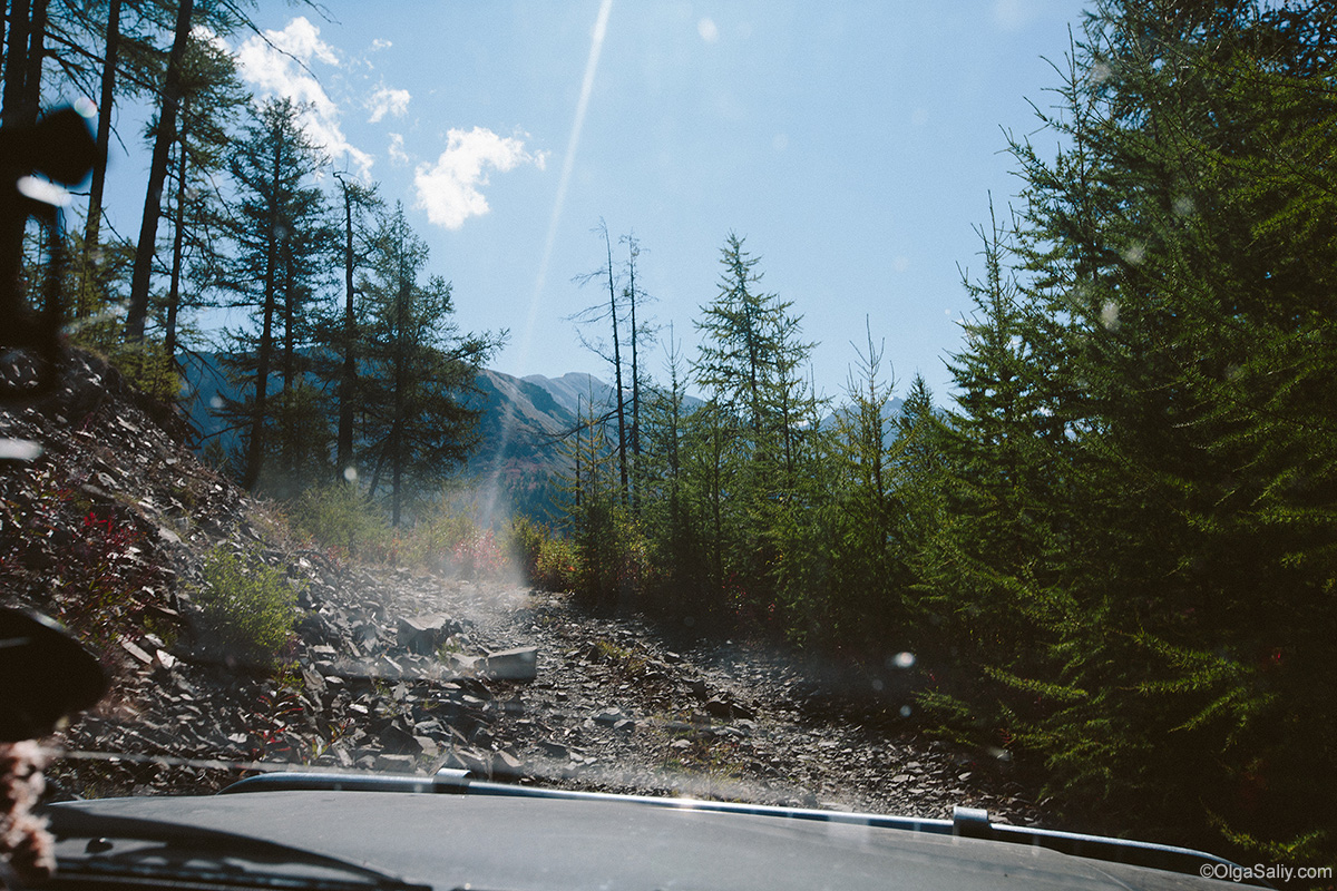 Auto travel in Altai Mountains (20)