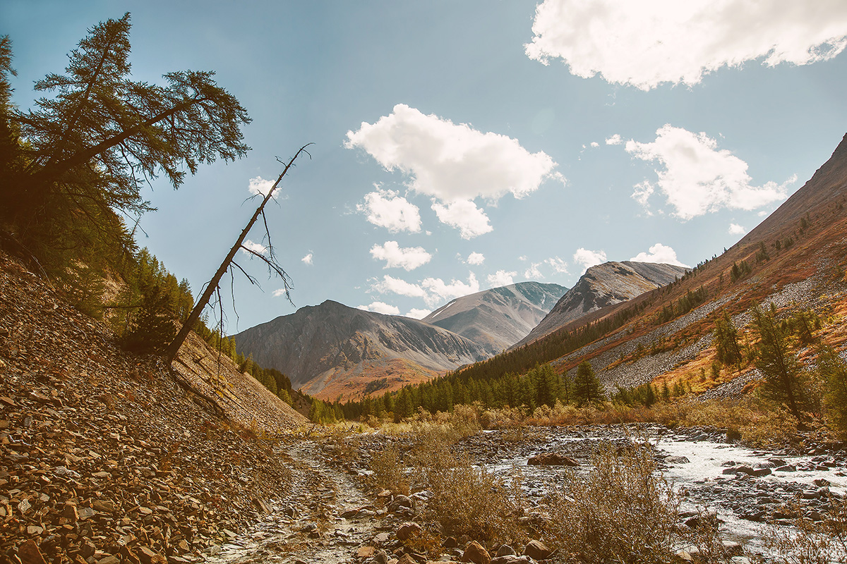 Auto travel in Altai Mountains (18)