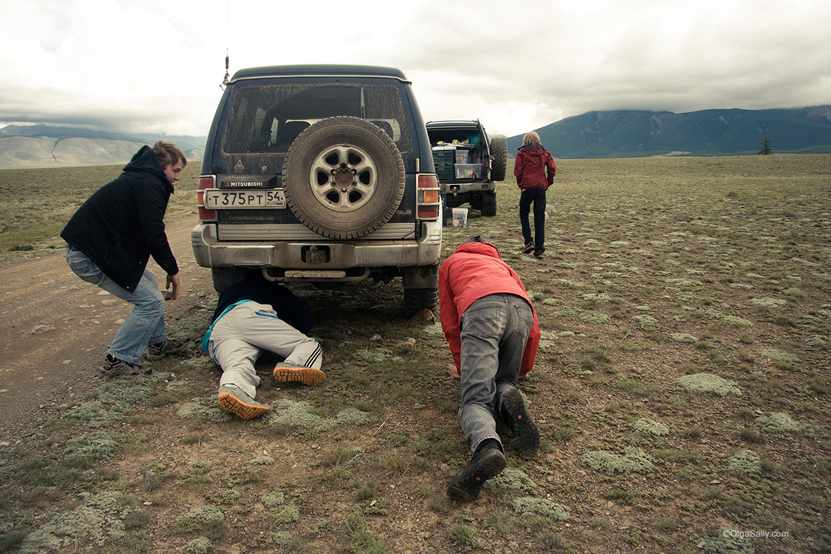 Auto travel in Altai Mountains (1)