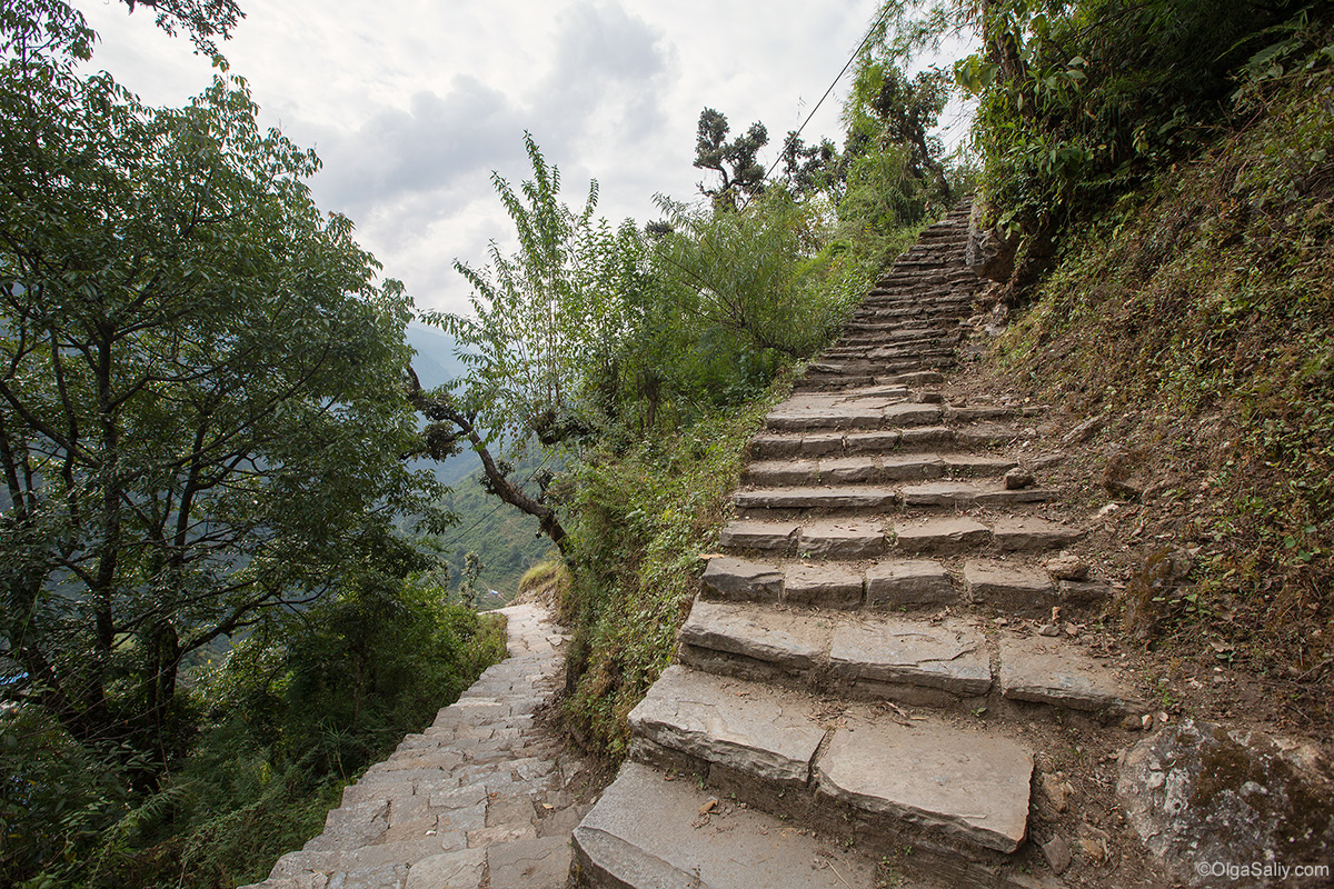 Stone Steps in Himalayas
