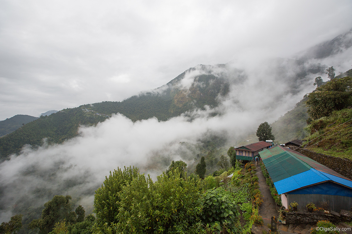 Annapurna Base Camp Trek, Sinua