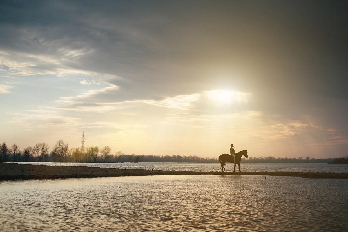 Riding lessons Novosibirsk (1)