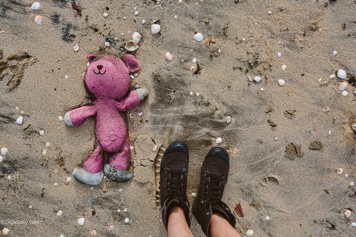 Bear on the beach Vietnam