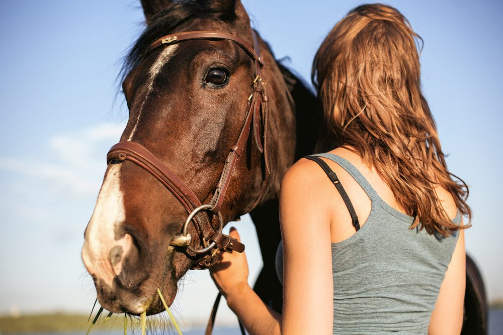 Portrait of Brown hors with brown hair woman outdoor