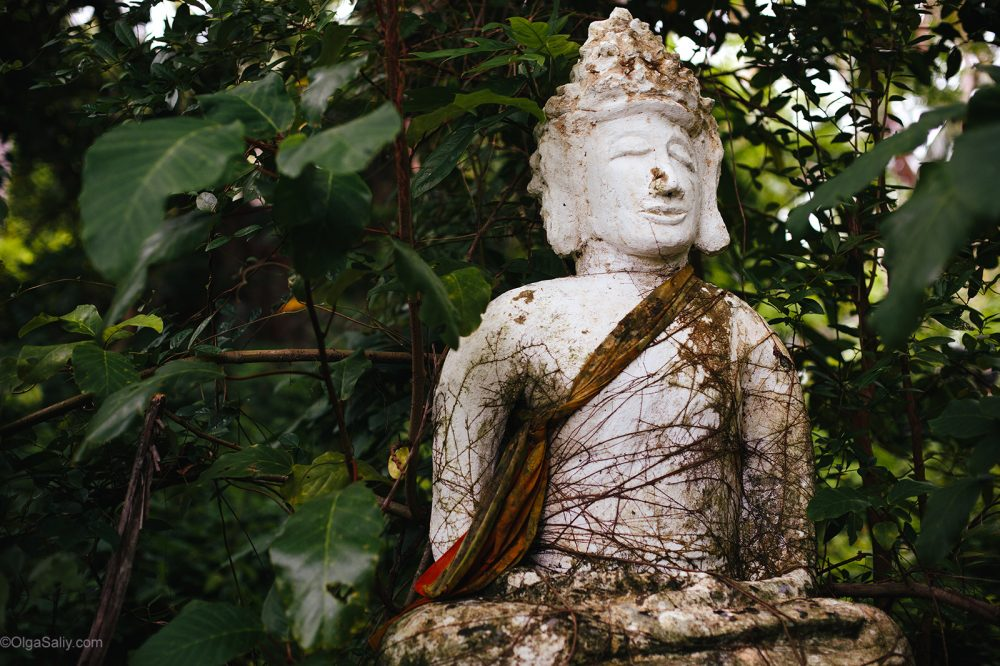 Abandoned statues with traces of bullets on Koh Samui (5)