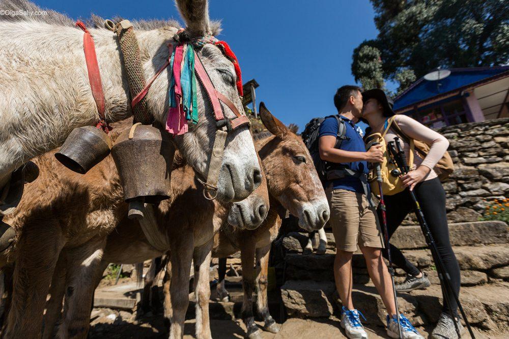Way to Annapurna Camp