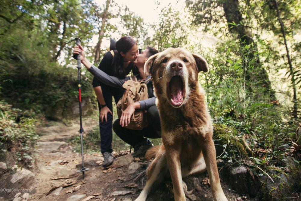 Love PhotoShoot in Nepal - trekking to Annapurna Base camp (55)