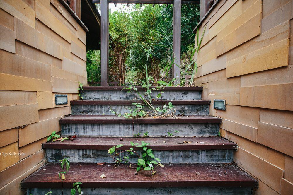 Samui Places: Abandoned Villa in Lamai jungle (8)