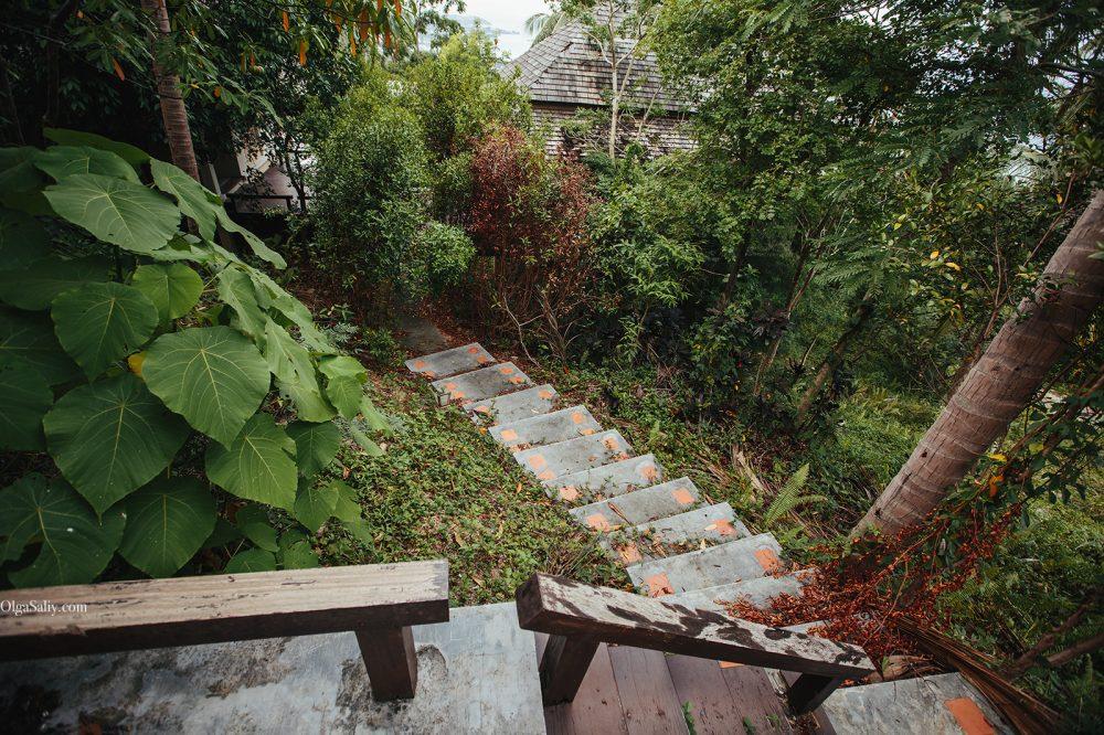 Samui Places: Abandoned Villa in Lamai jungle (14)