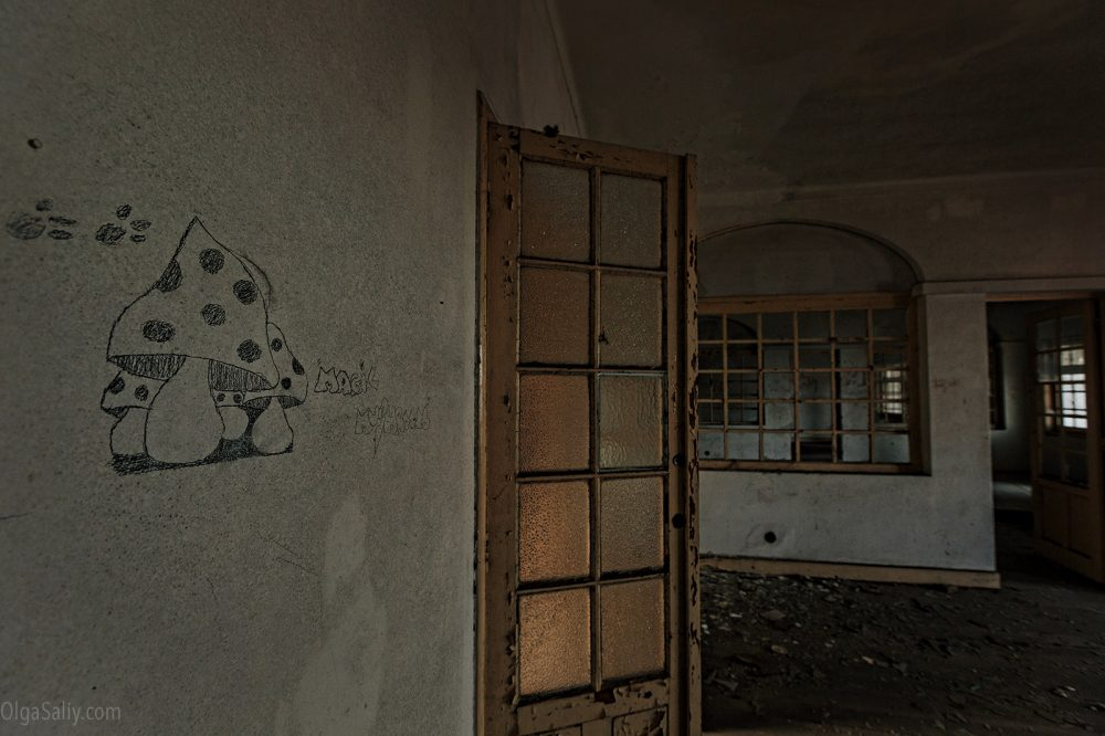 Magic Mushroom in Abandoned hospital