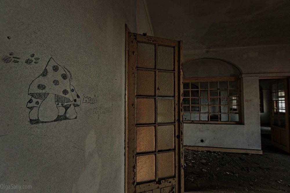 Magic Mushroom in Abandoned hospital